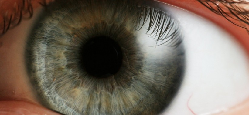 ojo_edited-1728x800_c
